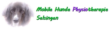 Mobile Hunde Physiotherapie Selsingen